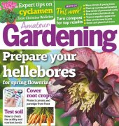 Amateur Gardening - 3rd December 2016 - IPC Media