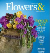 Flowers and Magazine - January 2017 - Teleflora