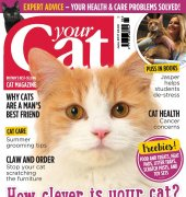 Your Cat - June 2017 - BPG Media