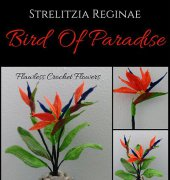 Bird of Paradise - Leticia Lebron - Flawless Crochet Flowers