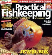 Practical Fishkeeping - Issue 13 - December 2015 - Bauer Media