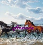 A Gallop at Sea - Arxinda Cross Stitch