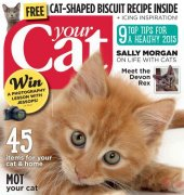 Your Cat - February 2015 - BPG Media